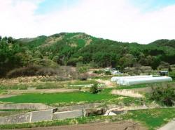 西側には里山と田園風景が広がります