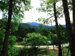 敷地から望む南アルプス仙丈ヶ岳