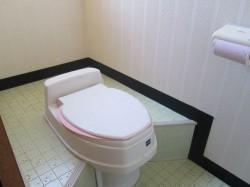 汲み取りトイレ(水洗可能・公共下水道)
