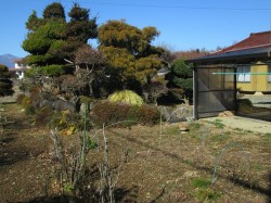 菜園スペースと庭園