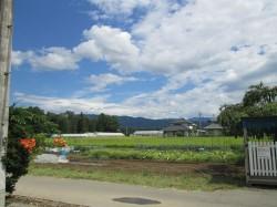 東側には田園風景が広がります