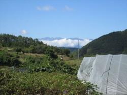 庭から望む里山、中央アルプス