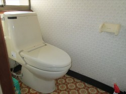 水洗トイレ(公共下水道)