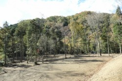 筱見四十八滝に隣接の里山